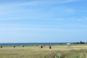 ZK Magdalen Islands 8