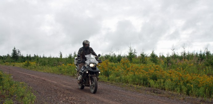 On service roads, just south of Petitcodiac. I'd known of the existence of these roads, but never bothered to explore them before.
