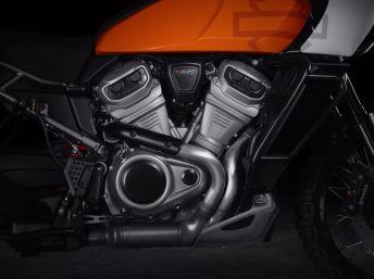 2020 Harley Davidson (15)