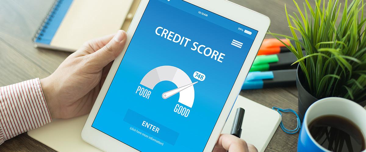 Free Credit Report Canada
