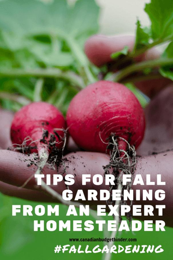 falling gardening tips