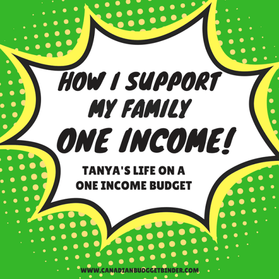 how i support my family on one income