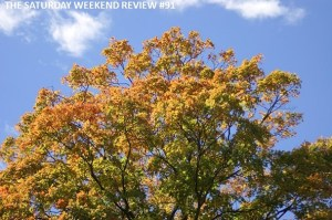 If you won the lottery would you go bankrupt? : The Saturday Weekend Review #91