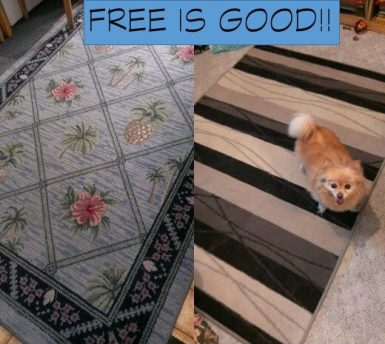 FREE IS GOOD RUGS (1)