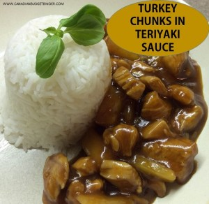 Turkey Chunks In Teriyaki Sauce