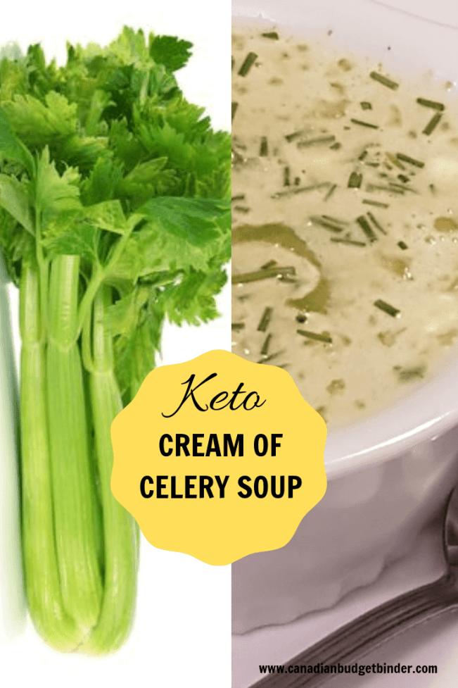 EASY KETO CREAM OF CELERY SOUP-1-1