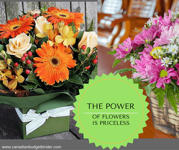 how to save money buying fresh flowers canadian budget binder