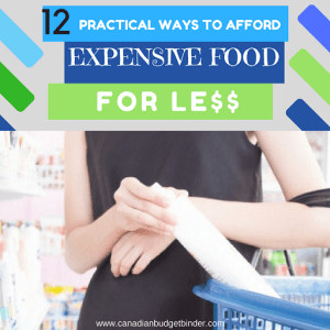 12 Practical Ways To Afford Expensive Food For Less  : The Grocery Game Challenge 2016 #4 Sept 26-Oct 3