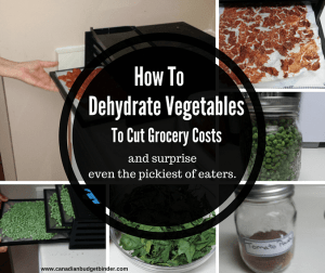 How To Dehydrate Vegetables To Cut Grocery Costs : The Grocery Game Challenge 2017 #1-2  July 3-16