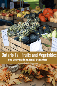 Ontario Fall Fruits and Vegetables Budget Meal Planning