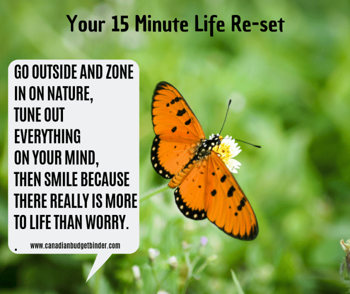 your life re-set quote