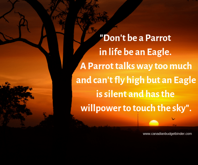 Don't be a Parrot in life be an Eagle. A Parrot talks way too much and can't fly high but an Eagle is silent and has the will power to touch the sky_.