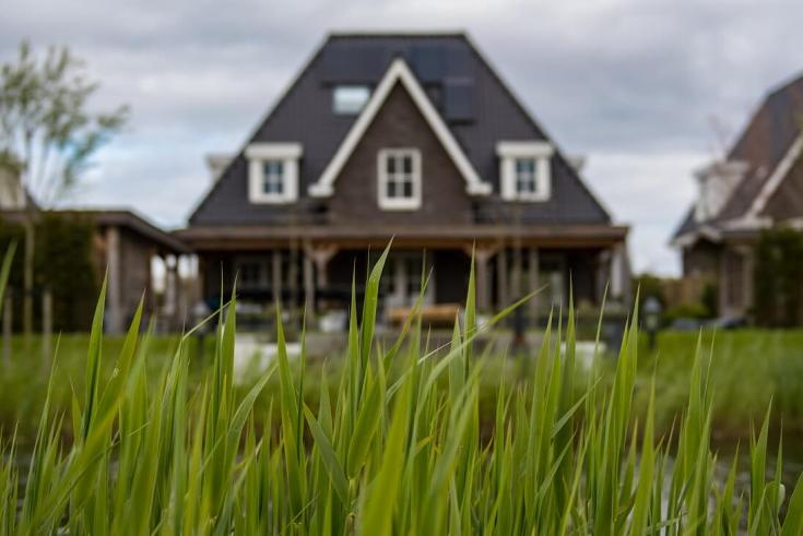 green grass sod big house