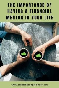 Financial Mentor