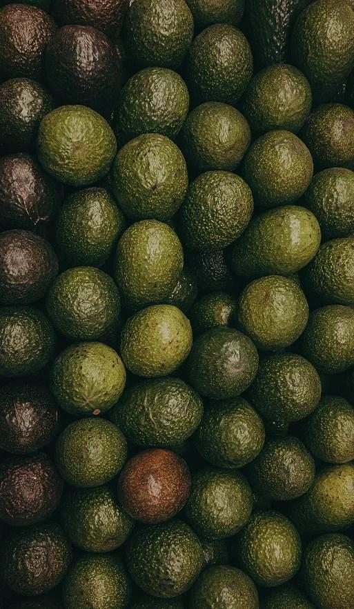 armazenamento de abacate
