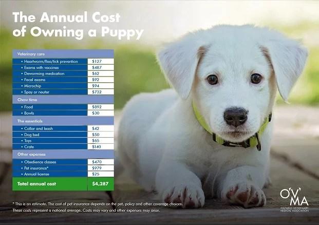 Puppy Costs