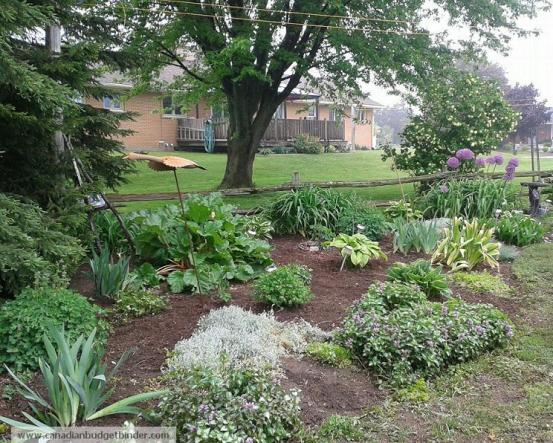 Landscaped garden wm