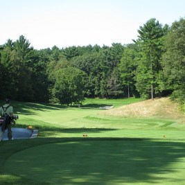 Another hole that show's the amazing shifts in elevation at Summit -- this is the par 4 8th.