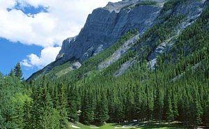 Banff Springs Golf Club