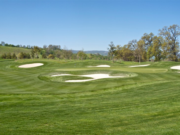 Make note of the very inviting quality of the green, apron and bunkering .