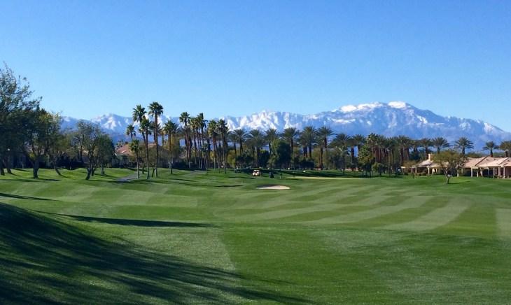 Heritage Palms golf club palm trees
