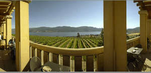 Terrace at Mission Hill Family Estate Winery (Image: Mission Hill Estate Winery)