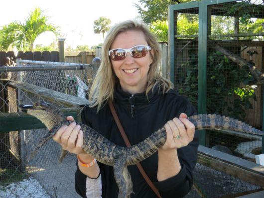 Sharon McAuley and a baby alligator (Image: Brian Kendall)