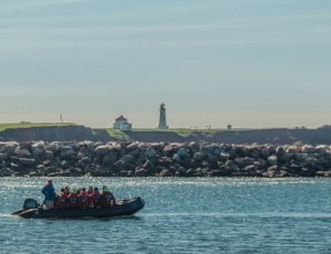 Returning to the ship by zodiac, with the Magdalen Island lighthouse in the background. (Image: One Ocean Expeditions)