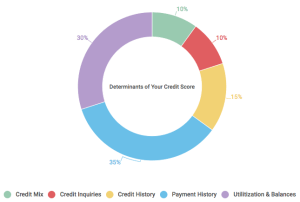 Credit Score Basics