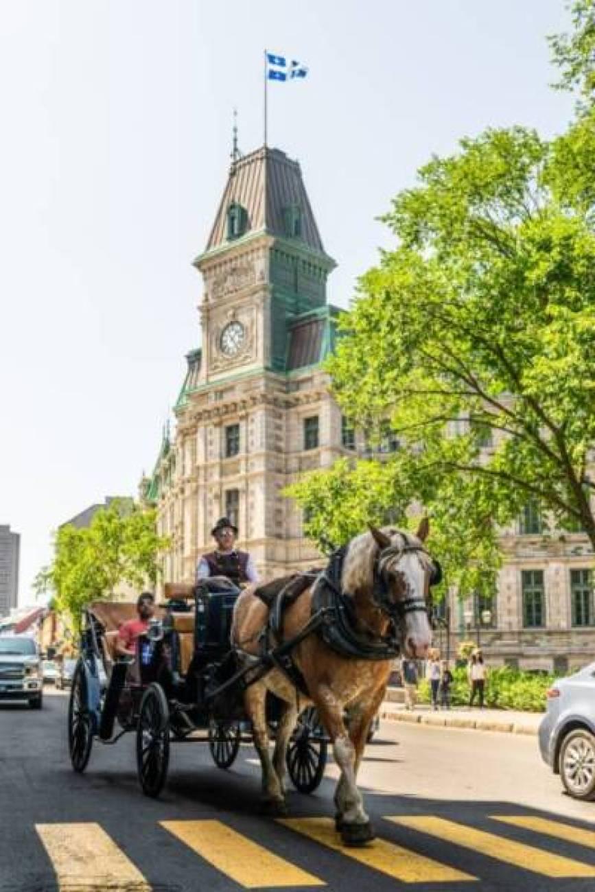 men riding a horse carriage