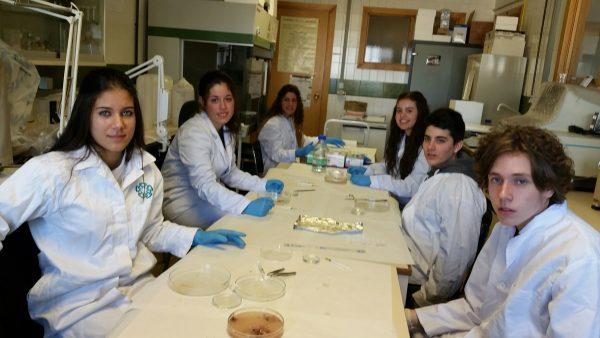Alumnos Programa PIIISA