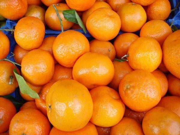 oranges-2147-600x450