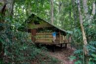 Campement Kongou 10
