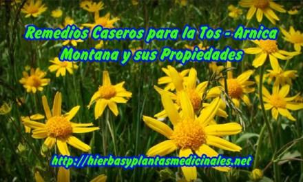 Remedios Caseros para la Tos – Arnica Montana y sus Propiedades