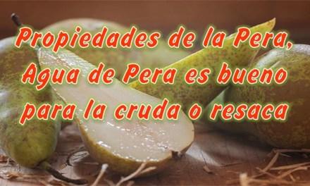 Beneficios y Propiedades de la Pera, Agua de Pera es bueno para la resaca o cruda, el colesterol y Antioxidante Natural
