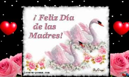 Frases para o por el dia de la Madre Bonitas cortas – Feliz dia de la Madre – Feliz dia Mama