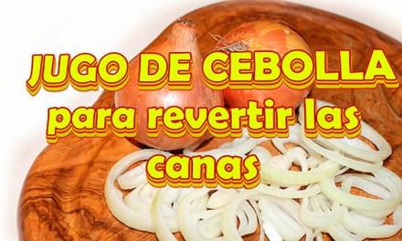 Adios a Las Canas Con La Cebolla y Como acelerar el Crecimiento del Cabello, como lo usan Los Famoso