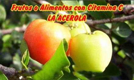 Beneficios de la Cereza o Acerola para la Salud- Frutas con Vitamina C