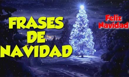 Felicitaciones de Navidad Originales 2017, Divertidas y Graciosas, Feliz de Navidad