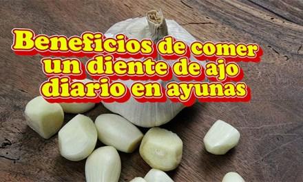 Beneficios de comer un diente de ajo diario en ayunas y cuando no es adecuado