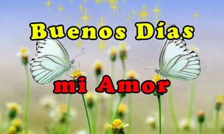 Buenos Dias mi Amor que tengas un Lindo dia