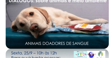 Animais doadores de sangue