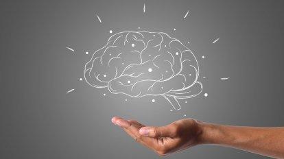 cerebro y lengua de signos