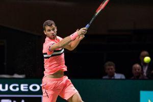 Dimitrov en el ATP de Rotterdam