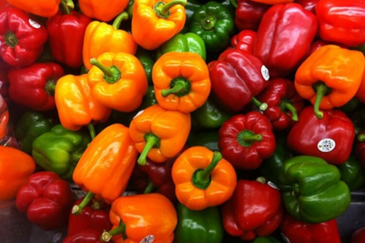 Coloured Peppers