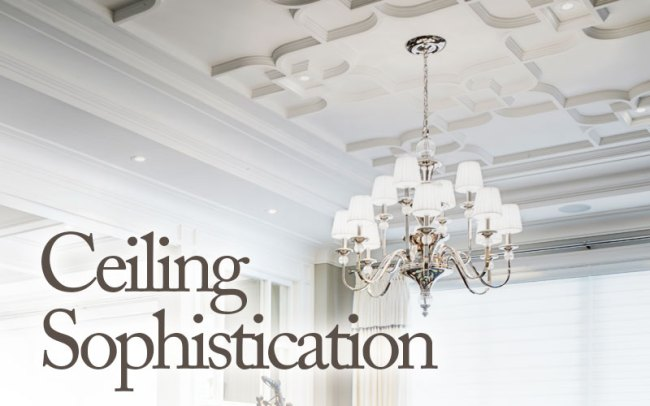 Ceilings by Canamould
