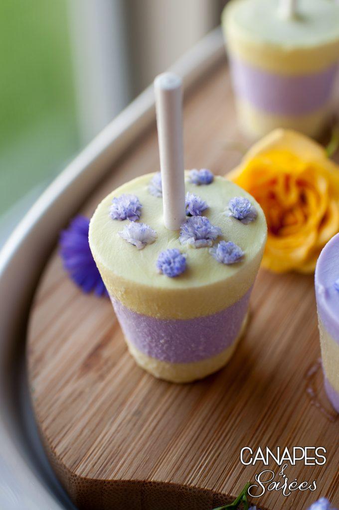 Close Up Lemon Lavender Coconut Cream Popsicle
