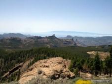 Pico de Las Nieves & Roque Nublo (2)