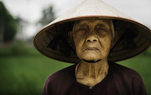 Cosechadora de Arroz en Vietnam