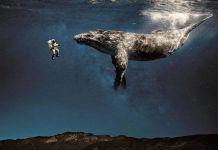 Astronauta y Ballena en Cielos